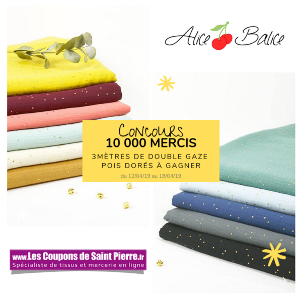 alice balice | 10 concours DIY pour fêter mes 10000 followers sur Facebook | coupons de saint pierre